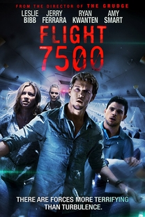 Voo 7500 - Poster / Capa / Cartaz - Oficial 6