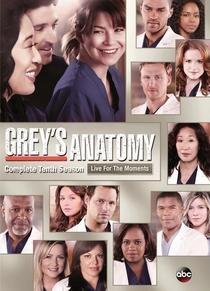 Grey's Anatomy (10ª Temporada) - Poster / Capa / Cartaz - Oficial 1