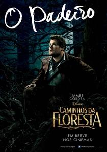 Caminhos da Floresta - Poster / Capa / Cartaz - Oficial 15