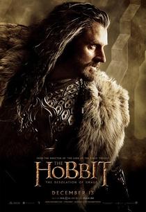 O Hobbit: A Desolação de Smaug - Poster / Capa / Cartaz - Oficial 15