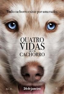Quatro Vidas de Um Cachorro - Poster / Capa / Cartaz - Oficial 7