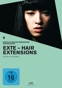 Extensões Capilares - Poster / Capa / Cartaz - Oficial 6
