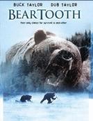 Montanha Selvagem (Beartooth)