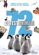 72 Animais Fofos (72 Cutest Animals)