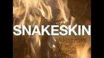 Snakeskin  - Poster / Capa / Cartaz - Oficial 1