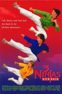 3 Ninjas Contra-Atacam - Poster / Capa / Cartaz - Oficial 1