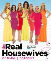 The Real Housewives of Miami (2 Temp.) - Poster / Capa / Cartaz - Oficial 1