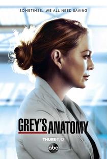 Série A Anatomia de Grey - 17ª Temporada Legendada Download