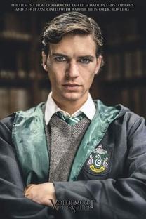 Voldemort: A Origem do Herdeiro - Poster / Capa / Cartaz - Oficial 2