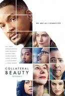 Beleza Oculta (Collateral Beauty)