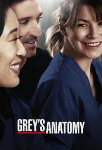 Grey's Anatomy (9ª Temporada) - Poster / Capa / Cartaz - Oficial 2