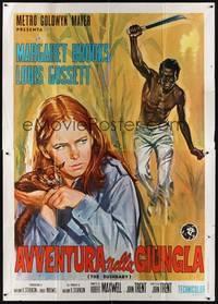 A menina das selvas - Poster / Capa / Cartaz - Oficial 3