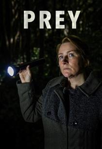 Prey (2ª Temporada) - Poster / Capa / Cartaz - Oficial 2