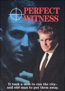 Testemunha Perfeita (Perfect Witness)