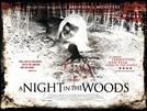 A Night In The Woods (A Night In The Woods)