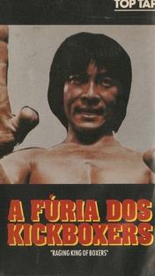 A Fúria dos Kickboxers - Poster / Capa / Cartaz - Oficial 1