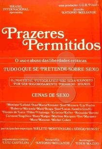 Prazeres Permitidos - Poster / Capa / Cartaz - Oficial 2