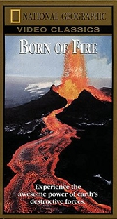 National Geographic Vídeo - As Forças da Terra - Poster / Capa / Cartaz - Oficial 3