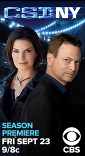 CSI: Nova York (8ª temporada) - Poster / Capa / Cartaz - Oficial 2