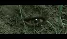 Escavadores (2010) Trailer Oficial Legendado.