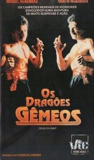 Os Dragões Gêmeos - Poster / Capa / Cartaz - Oficial 2