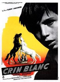 O Cavalo Branco - Poster / Capa / Cartaz - Oficial 2