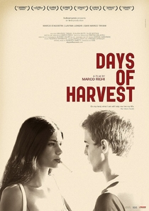 Days of Harvest - Poster / Capa / Cartaz - Oficial 2
