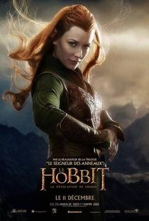 O Hobbit: A Desolação de Smaug - Poster / Capa / Cartaz - Oficial 11