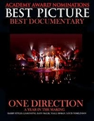 One Direction - A Year In The Making (One Direction - A Year In The Making)