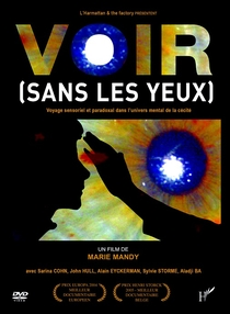 Vista (Sem os Olhos) - Viagem Sensorial e Paradoxal no Universo Mental da Cegueira - Poster / Capa / Cartaz - Oficial 1