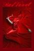 Veludo Vermelho