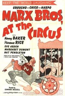 Os Irmãos Marx No Circo - Poster / Capa / Cartaz - Oficial 1