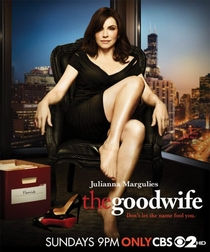 The Good Wife (3ª Temporada) - Poster / Capa / Cartaz - Oficial 1