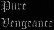 Pure Vengeance - Poster / Capa / Cartaz - Oficial 1