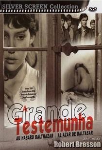 A Grande Testemunha - Poster / Capa / Cartaz - Oficial 8