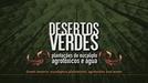 Desertos Verdes: Plantações de Eucalipto, Agrotóxicos e Água