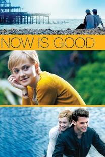 Agora e Para Sempre - Poster / Capa / Cartaz - Oficial 6