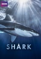 Shark (1ª Temporada)