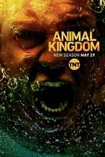 Animal Kingdom (3ª Temporada) - Poster / Capa / Cartaz - Oficial 1
