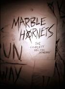 Marble Hornets (2ª Temporada)