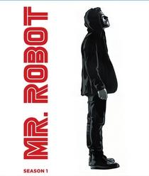 Mr. Robot (1ª Temporada) - Poster / Capa / Cartaz - Oficial 8