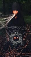 Volumen (Björk: Volumen)