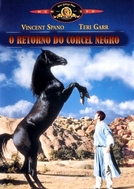 O Regresso do Corcel Negro (Black Stallion Returns, The)