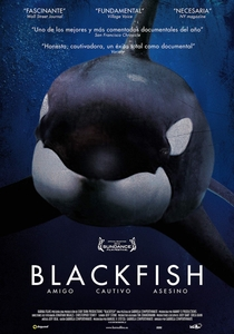 Blackfish - Fúria Animal - Poster / Capa / Cartaz - Oficial 2