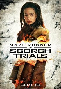 Maze Runner: Prova de Fogo - Poster / Capa / Cartaz - Oficial 14