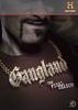 Gangland (7ª Temporada)