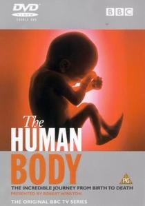 O Corpo Humano - O Poder do Cérebro - Poster / Capa / Cartaz - Oficial 1