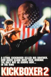Kickboxer 2: A Vingança do Dragão - Poster / Capa / Cartaz - Oficial 1