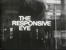 O Olhar Compreensivo (The Responsive Eye)