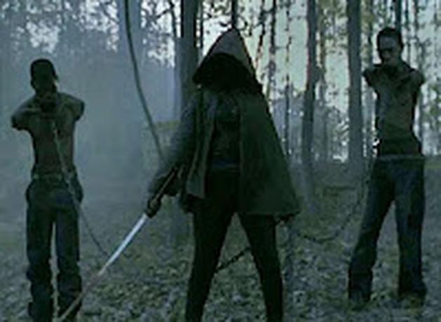 GARGALHANDO POR DENTRO: The Walking Dead- Review